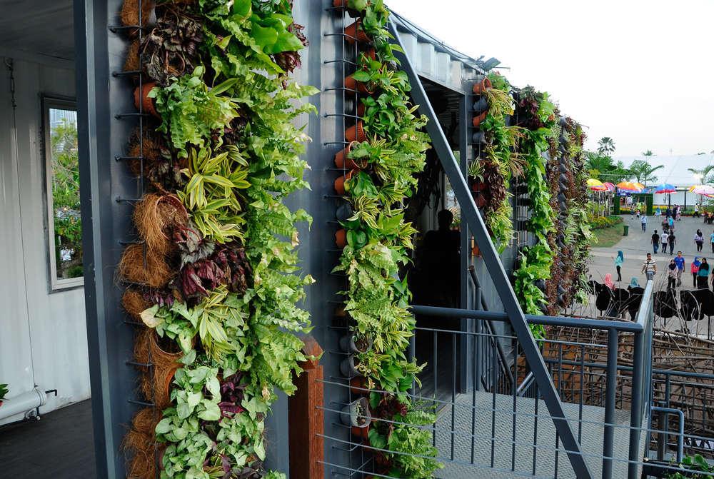 Jardines verticales. Innovación y ahorro energético